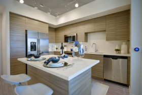 Chic apartment interior with quartz kitchen island, light wood cabinets and stainless steel amenities