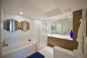 Large master bathroom with separate shower and bath, dual-sink vanity and wood cabinets